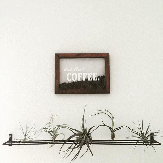 観葉植物で飾る3