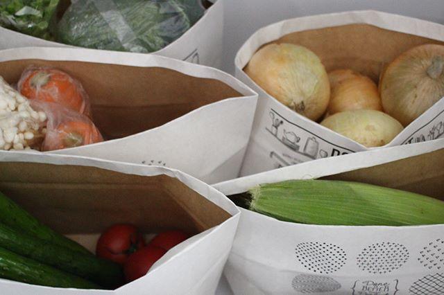野菜収納方法6