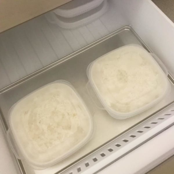 美味しく保存ごはん冷凍タッパー