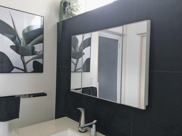 洗面所の壁面ミラー内収納2