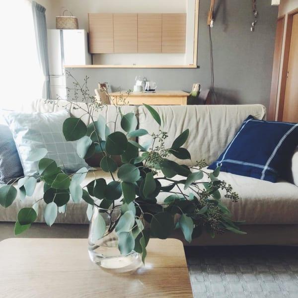 古道具と植物のある素敵な平屋暮らしのインテリア2