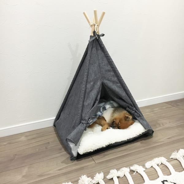 ペット用テントティピー