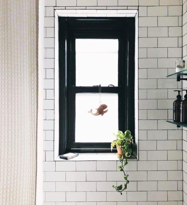 観葉植物を置いて出窓で育む7