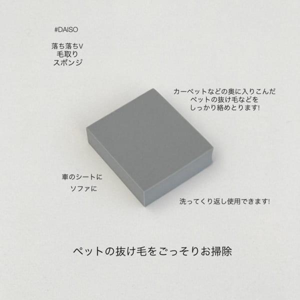 ダイソーの毛取りスポンジカーペット用2