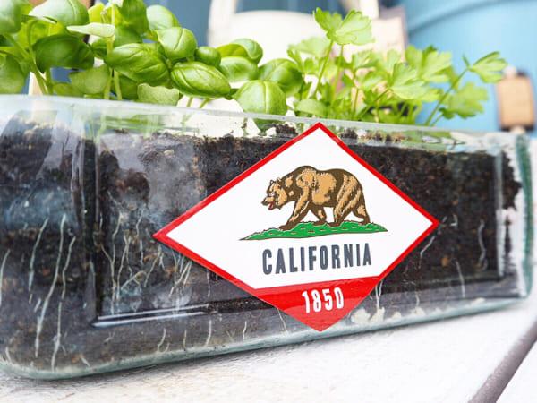 カリフォルニアの雰囲気を楽しむディスプレイスペース8