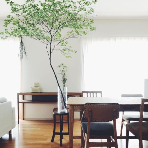 古道具と植物のある素敵な平屋暮らしのインテリア6