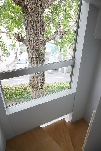 シンボルのイチョウの木が見えるベンチのような居場所の階段3