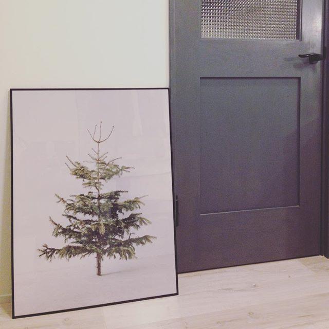 植物のアートフレーム2