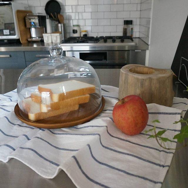 ガラスドームに食パンを
