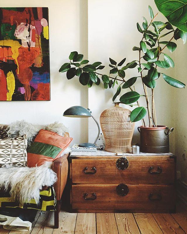 植物をお部屋の中に置いてリラックスな空間に