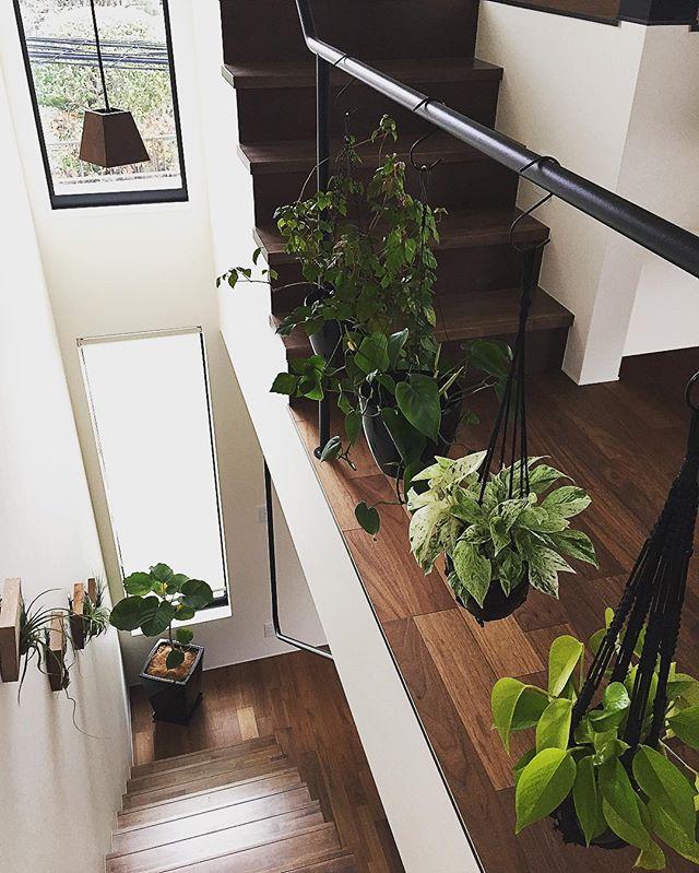 階段の手すりにハンギングして