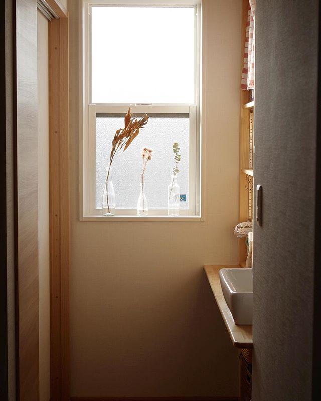 植物を使って明るい窓に4