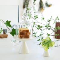 テーブルウェアやインテリアに♪ガラスドームをおしゃれに使おう!