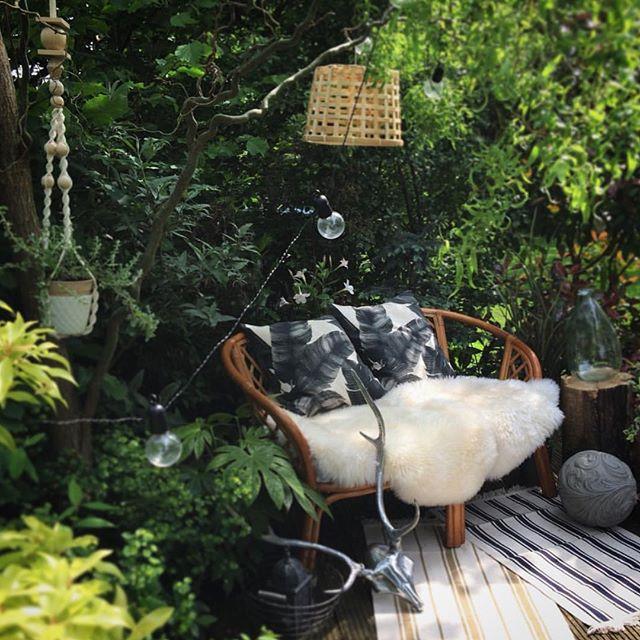 植物をお部屋の中に置いてリラックスな空間に5