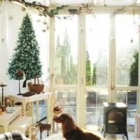 大きなクリスマスツリーも夢じゃない!壁面に飾るウォールツリー特集