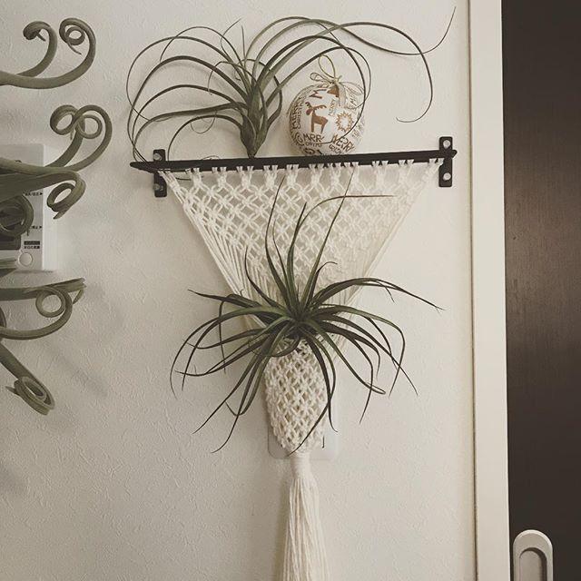 壁に掛けるおしゃれな飾り方