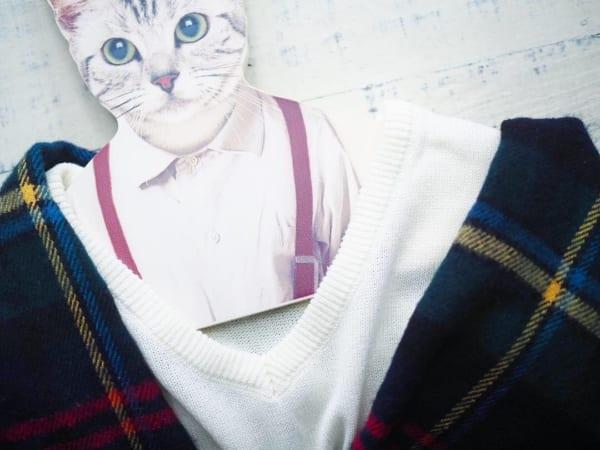 ■1.【ダイソー】ストールクリップ