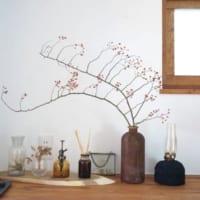 いつもの暮らしに草花を飾る楽しみを♪素敵な草花&フラワーベースをご紹介!