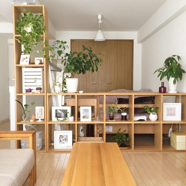 家具の配置バランスでスペースを区切った一人暮らしインテリア2