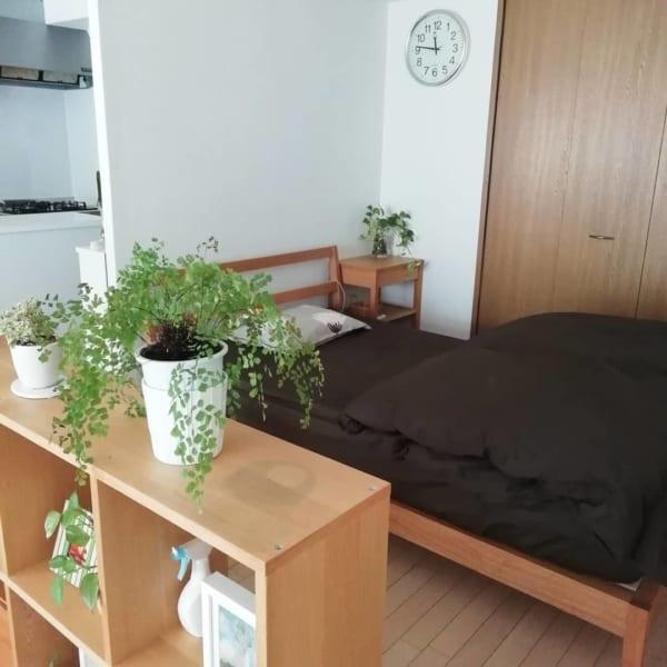 家具の配置バランスでスペースを区切った一人暮らしインテリア3