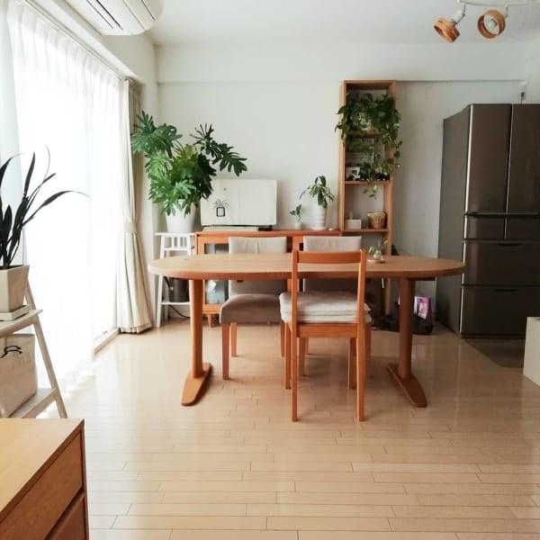 家具の配置バランスでスペースを区切った一人暮らしインテリア4