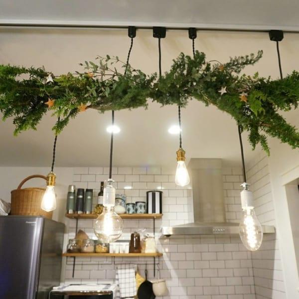 植物のナチュラル感が素敵なクリスマスディスプレイ3