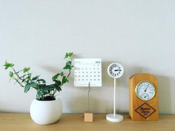 小さい観葉植物4