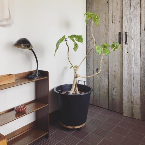 リノベーションで叶える、木のぬくもり感溢れる空間づくり10