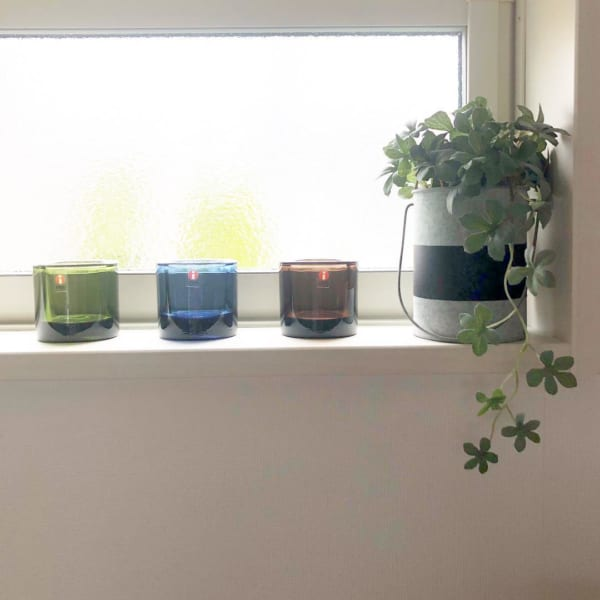 小さい観葉植物25
