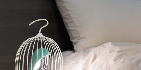 幸せを運んでくるかも♡鳥かごをアレンジしてインテリアのアクセントにしてみよう!