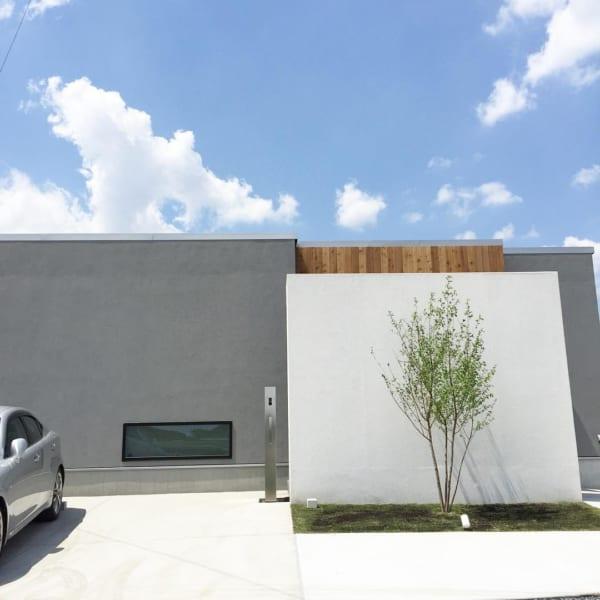 坪庭を取り入れた、明るく開放的な空間づくりが魅力の平屋
