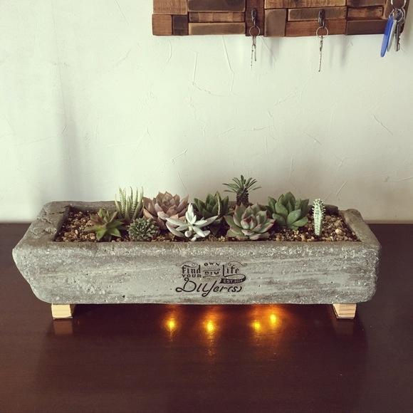 プランター型のセメント鉢
