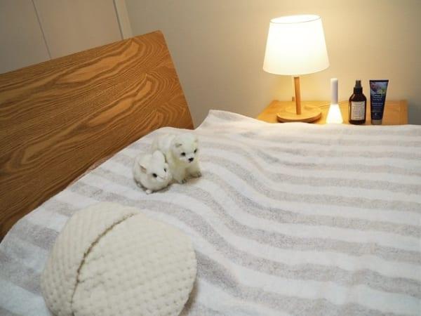 安眠に効果的な寝室インテリアの法則29