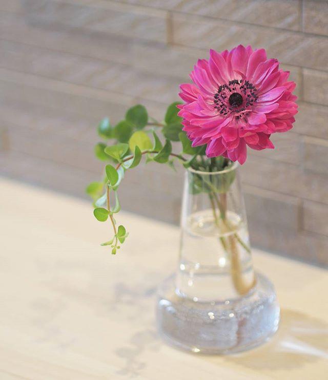 ピンクのお花で華やかに
