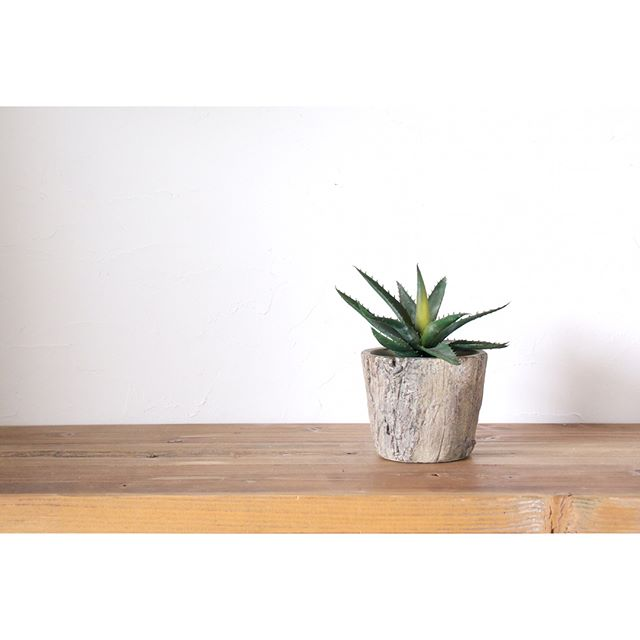 リビングに観葉植物を飾ろう33