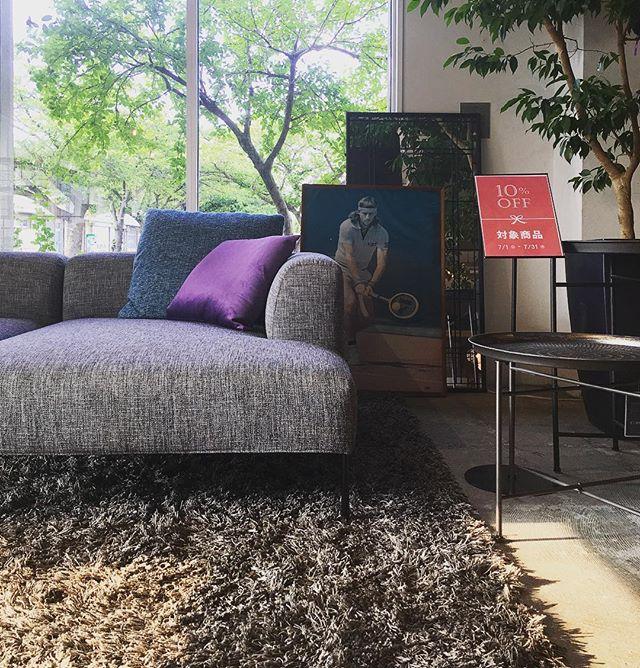 シックな雰囲気のソファ