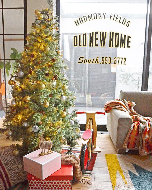 クリスマスツリーはシンプルがおしゃれ