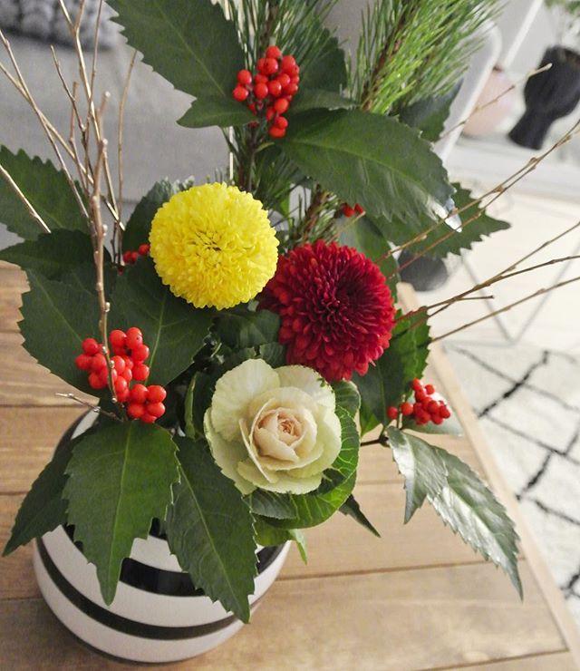固まって実る赤い実とギザギザの葉っぱが特徴