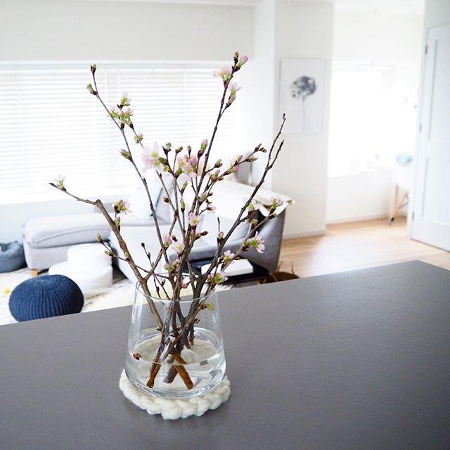 「花のある暮らし」7