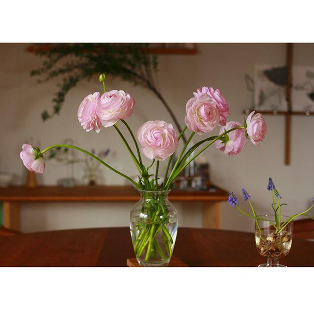 「花のある暮らし」2