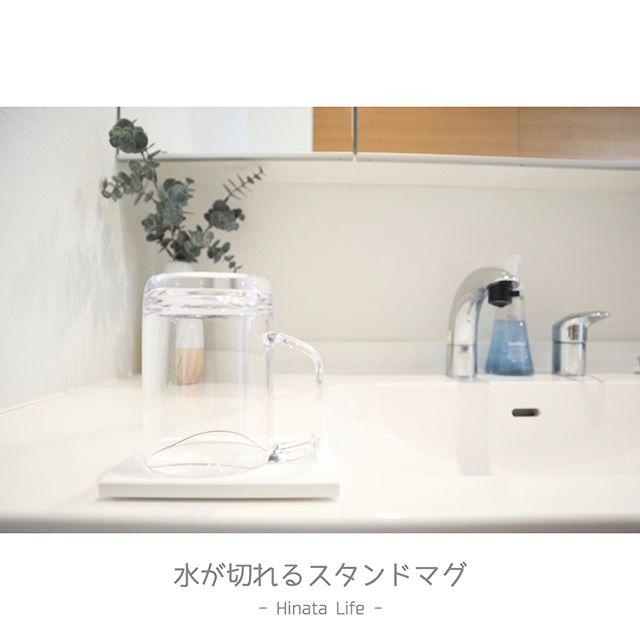 歯磨きコップ カビ対策3
