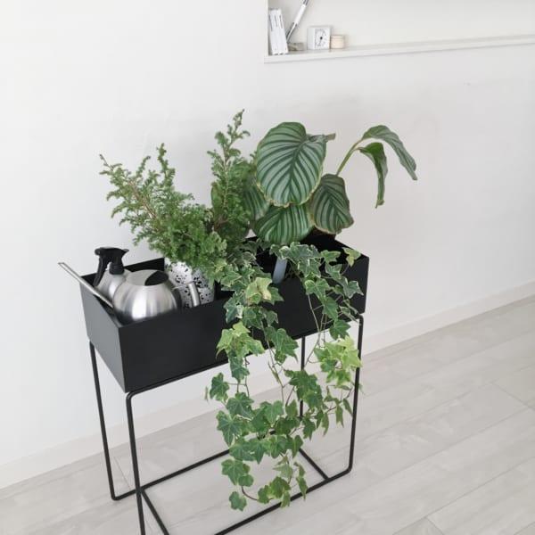 ferm living「plant box」2