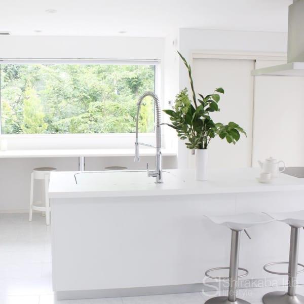 緑が映える白いシステムキッチン