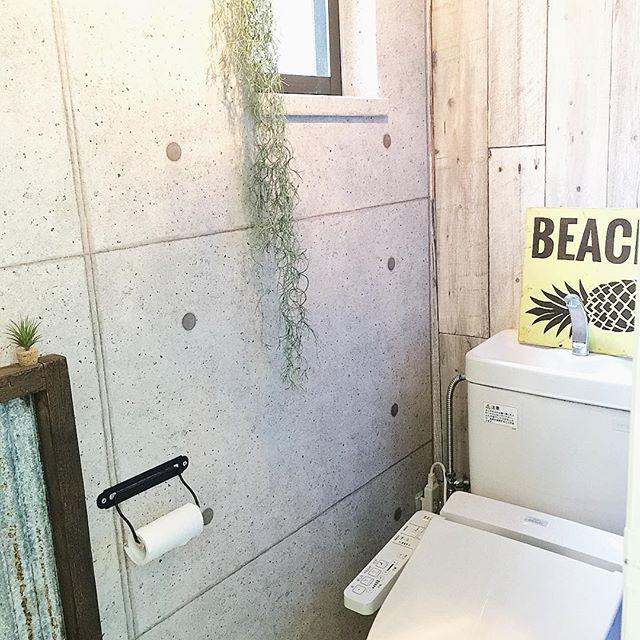 トイレにグリーンをおしゃれに飾ろう!8