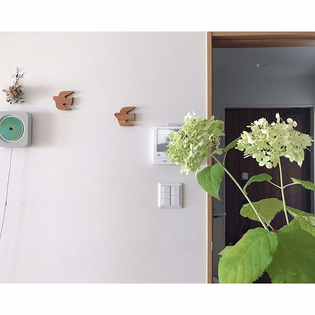 壁掛け収納 壁掛けできるCDプレーヤー
