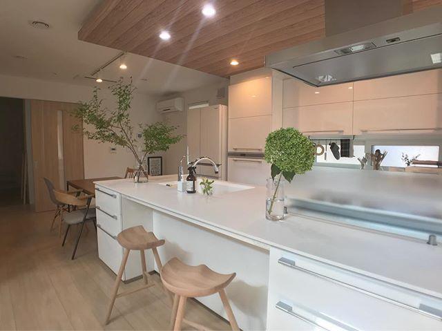 キッチンインテリア 調理台