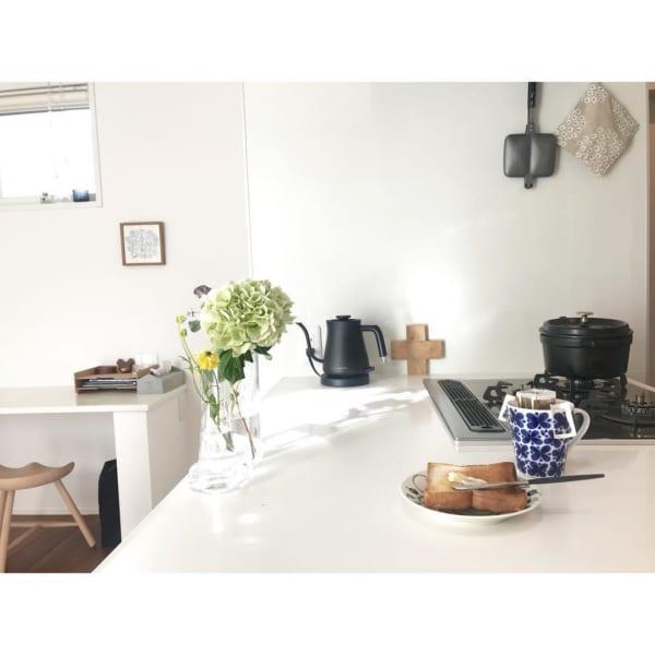 植物 部屋3