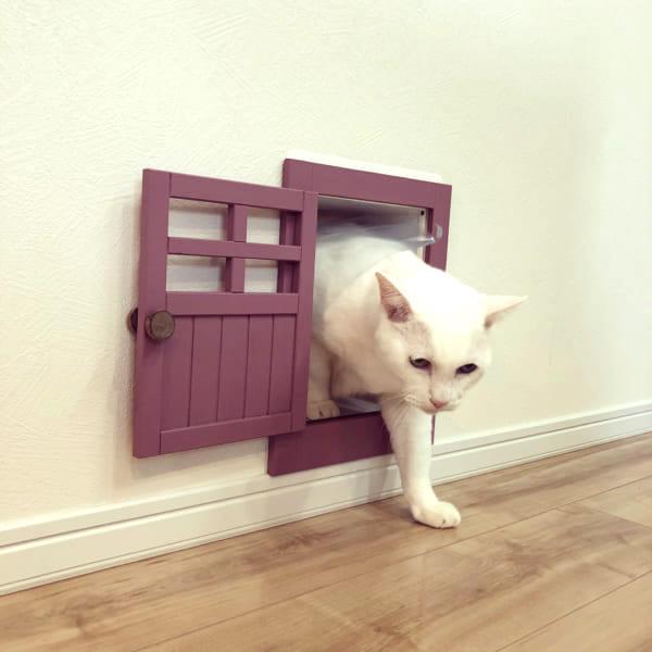 猫 インテリア