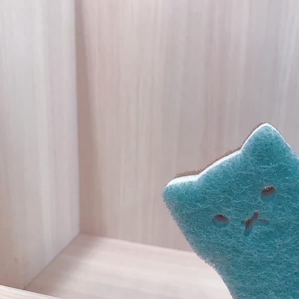 3COINS キッチンスポンジ 猫