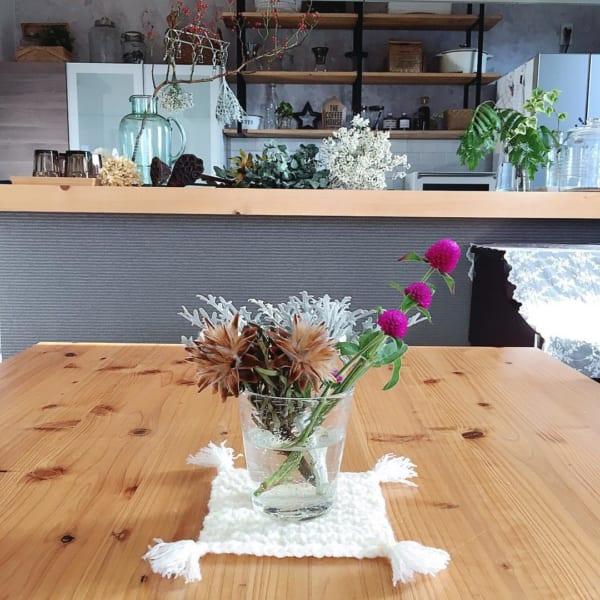 植物 部屋8